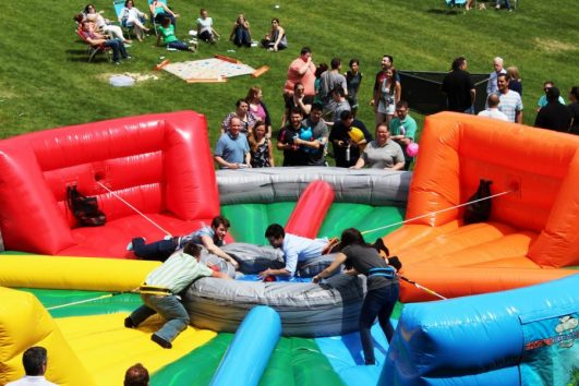 Giant Hungry Hippo Inflatable Game Rental
