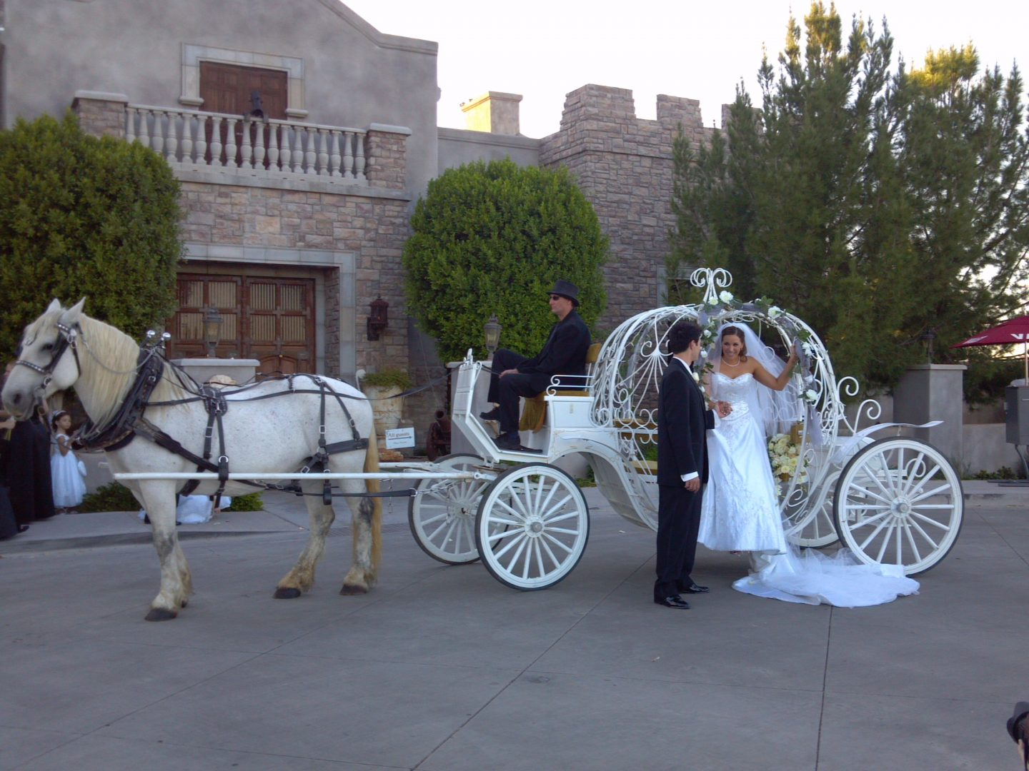 Wedding Carriage Rental Phoenix